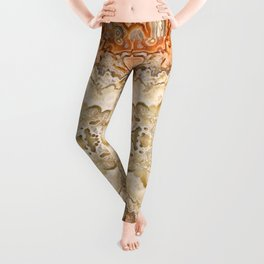 Crazy Lace Agate 2 Leggings