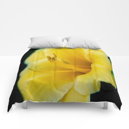 Day Lily-4 Comforters