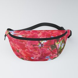 The tropical beauty of bougainvilleas Fanny Pack
