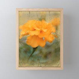 Orange Marigold  Raindrop Abstract Framed Mini Art Print