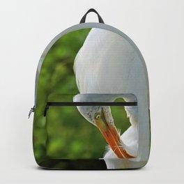 Preening Time Backpack
