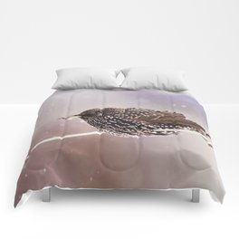 Darling Starling Comforters