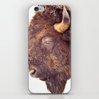 bull iPhone & iPod Skins featuring Bull by BonZeye Studio