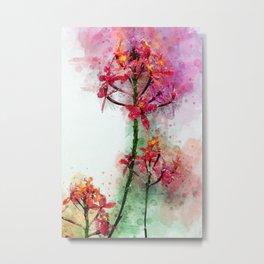 Epidendrum II Metal Print