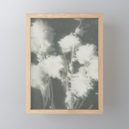 Gray Dahlias Framed Mini Art Print