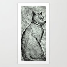 Wise Old Cat Art Print