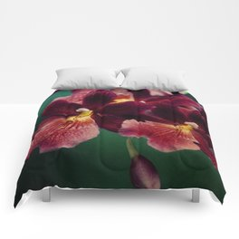 The mystery of orchid(13) Comforters