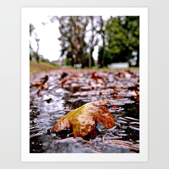 Wet Autumn leaf Art Print