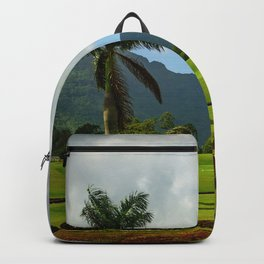 Picture Perfect Backpack