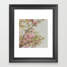Sweet Pink Magnolia Framed Art Print