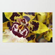 Leopard Orchid Rug