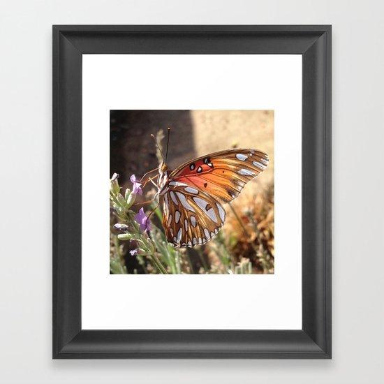 Butterfly on Lavender Framed Art Print