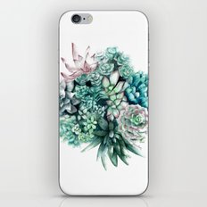 Cactus circle iPhone & iPod Skin