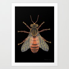 Bee (Abeille) Art Print