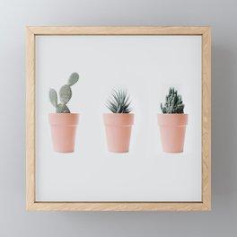 Cactus love IV Framed Mini Art Print