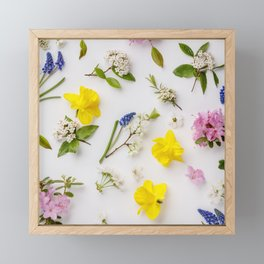Floral pattern with spring flowers and leaves Framed Mini Art Print