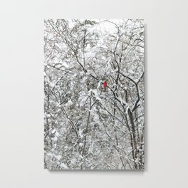 Bright Cardinal in the Snowy Woods Metal Print