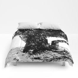 Big tree Comforters