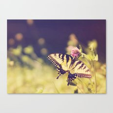 If nothing changed, there'd be no butterflies.~walt disney Canvas Print
