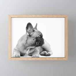 FrenchBulldog Puppy Framed Mini Art Print