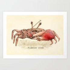 Fiddler Crab Art Print