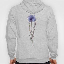 blue cornflower fields Hoody
