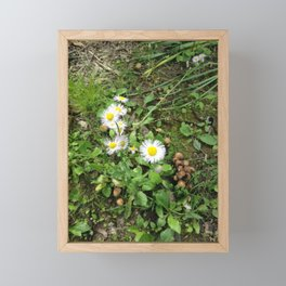 Walk Among The Faeries Framed Mini Art Print