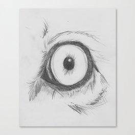 Cats Eye (lion) Canvas Print