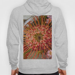 Pincushion Protea Hoody
