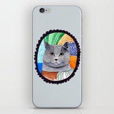 KITTY / GREY iPhone & iPod Skin
