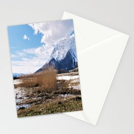the big grimming Stationery Cards