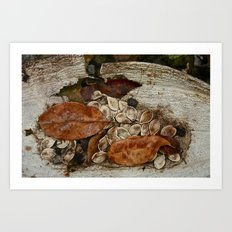 Remains Art Print