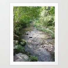 Across the river ! Art Print