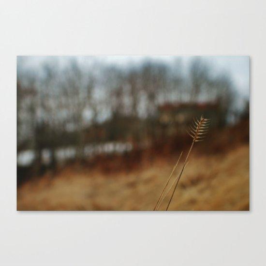 Natures wonders Canvas Print