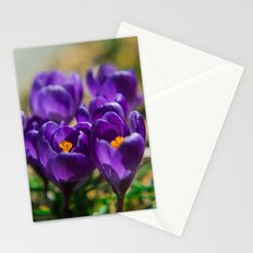 Spring Colors  Stationery Cards
