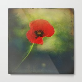 I found a Poppy Metal Print