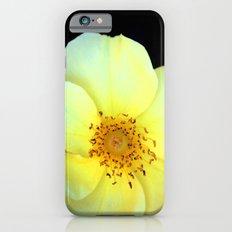Yellow Bloom iPhone 6s Slim Case
