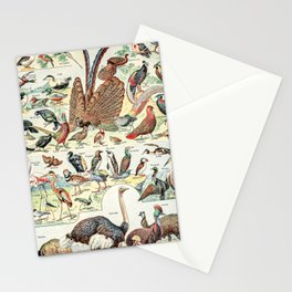 Wild Birds // Oiseaux by Adolphe Millot XL 19th Century Science Textbook Diagram Artwork Stationery Cards