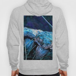 alien landscape indigo purple orange surreallist mushrooms Hoody