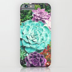 Succulent iPhone 6s Slim Case