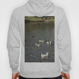 Just Ducky Hoody
