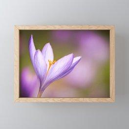 Dewy flower  Framed Mini Art Print