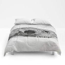Whitetail Deer Skull (Doe) - 8x10 Tintype Photo Comforters