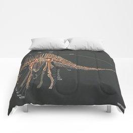 Amargasaurus Skeletal Study Comforters