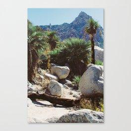 Cañon de Guadalupe Canvas Print