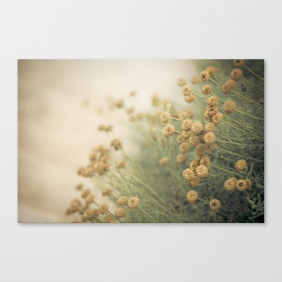 we still have time Canvas Print