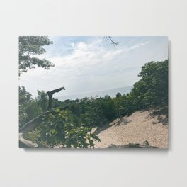 Tree top view Metal Print