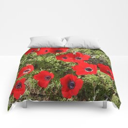 Wild Anemone Flowers In A Spring Field Comforters