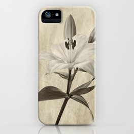 Lily in Sepia iPhone Case