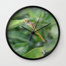 Green and Brown Dragonfly Holding On To Oleander Wall Clock